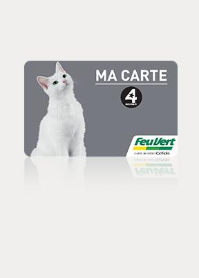 carte grise payable en plusieurs fois feu vert Payez en plusieurs fois vos achats   carte 4 étoiles   Feu Vert