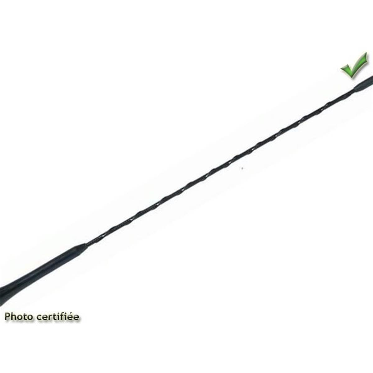 Brin d'antenne 20 cm
